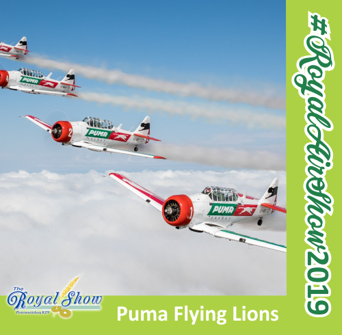 The Puma Flying Lions will be putting on an air show at the Royal Show in 2019.