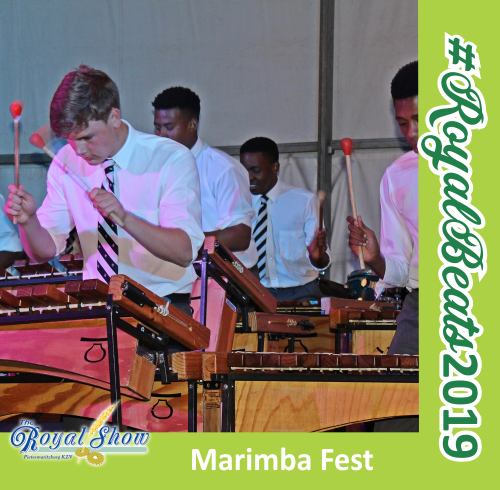 Rock 'n Royal Marimba Fest