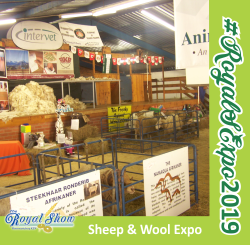 Sheep & Wool Expo